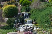 2011.09.03 Japanese Garden, Cowra nsw 0002